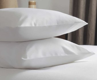Alanor Jersey Cotton Classic Pillow Case Pair